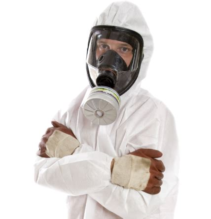 michigan mold remediation company mold removal experts