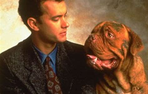what of is turner and hooch turner and hooch turner hooch partners best cop duos popsugar