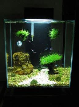 fluval edge 2 beleuchtung fluval edge 2 aquarium diy lighting upgrade with led light
