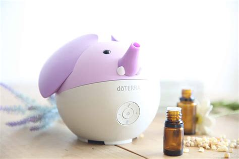 essential oil diffuser blends  kids  oily house