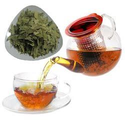 Teh Cina resep herbal teh jati china lunturkan lemak 187 harian jogja