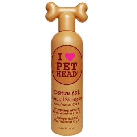 pet head oatmeal shampoo big dog world