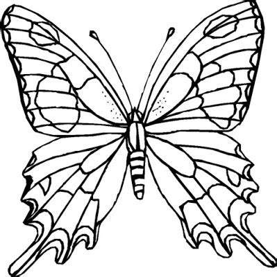 crayola coloring pages butterfly butterfly coloring pages crayola colorings net