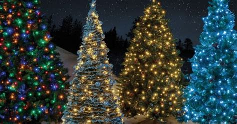 how much more do christmas trees cost for 2018 where to get the cheapest trees including ikea aldi tesco home bargains and more