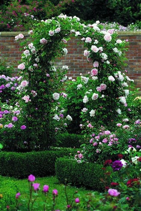 Pretty Garden Trellis Pin By Spinne On Arch And Arbor