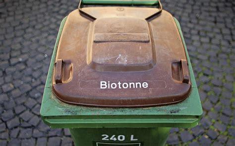 was tun gegen maden in der biotonne der ortenaukreis wehrt sich gegen die biotonne offenburg