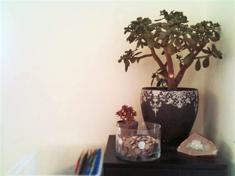 wealth corner in bedroom office feng shui how to use feng shui to increase wealth