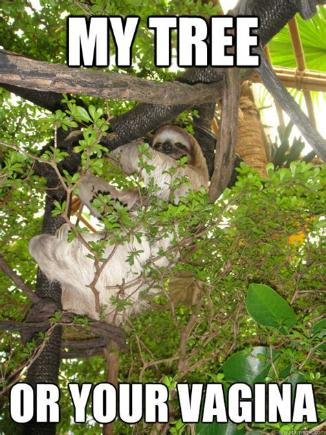 Vagina Meme - my tree or your vagina inappropriate sloth quickmeme