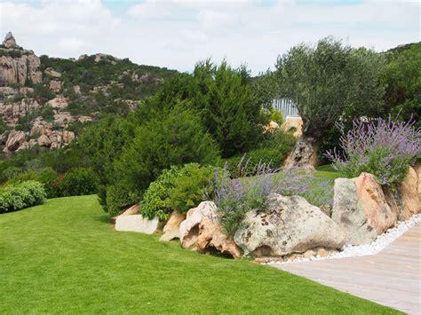 giardino mediterraneo giardino mediterraneo in sardegna hortensia