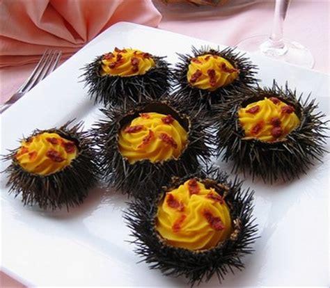 oursin cuisine recette manureva d oursins not 233 e 4 1 5