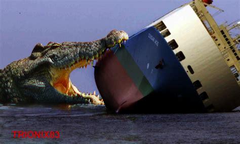 las imagenes m 225 s terrorificas del mundo youtube el cocodrilo mas grande del mundo animales salvajes