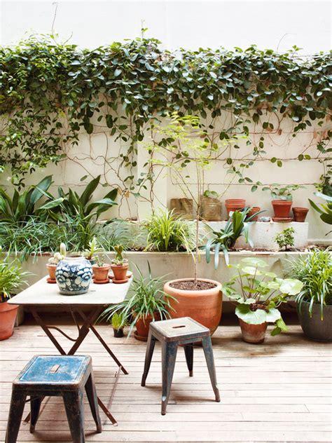 barcelona patio interior una vivienda con patio interior nuevo estilo