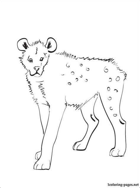 hyena coloring page coloring pages