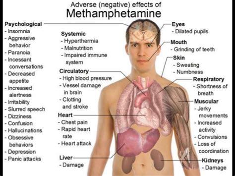 All Around Detox Meth Opiates by Meth Meth Methhetamine Is Groose Some Side