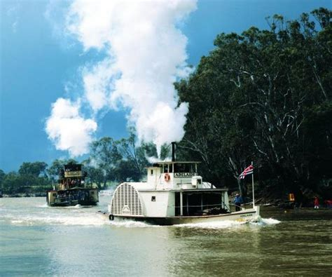 paddle boats canberra lake murray river photos travel victoria accommodation