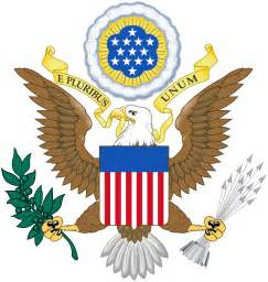 United States Of America National Flower - military eagle symbol galleryhip com the hippest