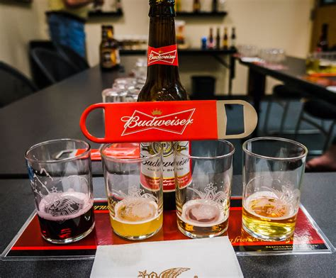 budweiser beer budweiser beer in jacksonville fl review and tour
