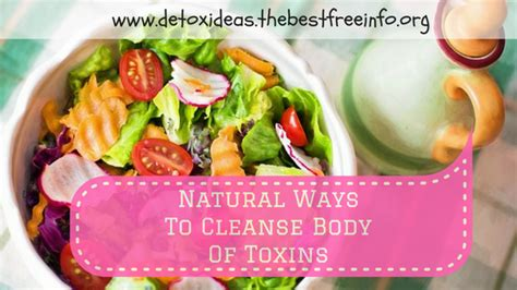 Best Way To Detox Your System From by Foods That Help Remove Toxins From The