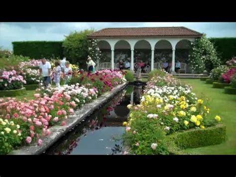 david austin rose garden youtube