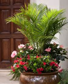 Potted Palms For Patio 25 Container Garden Ideas The Scrap Shoppe