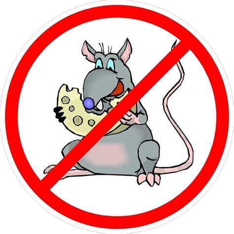 No Rats Sticker 3 no rats cheese union oilfield hat helmet