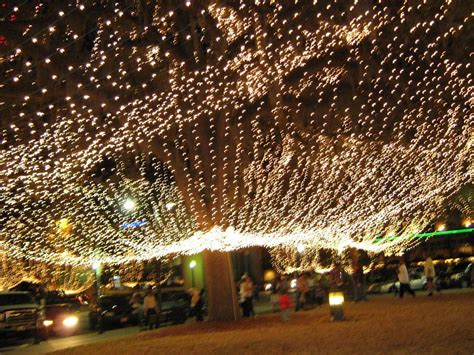 panoramio photo of canopy of christmas lights ocala florida