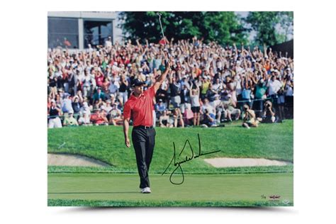 woods a celebration tiger woods autographed victory celebration picture