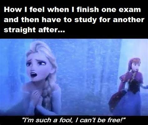 College Test Meme - quotes frozen top 15 most funniest frozen quotes