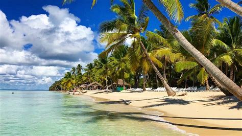 catamaran saona island dominican republic dominican republic saona island catamaran cruise