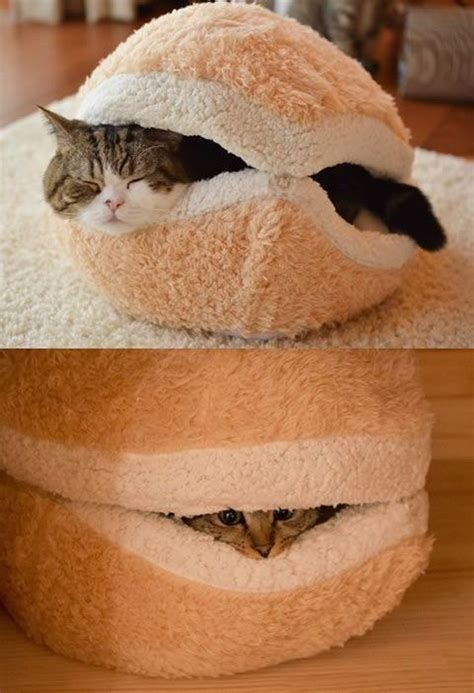 cat macaron bed 25 warm and cozy cat beds home design and interior