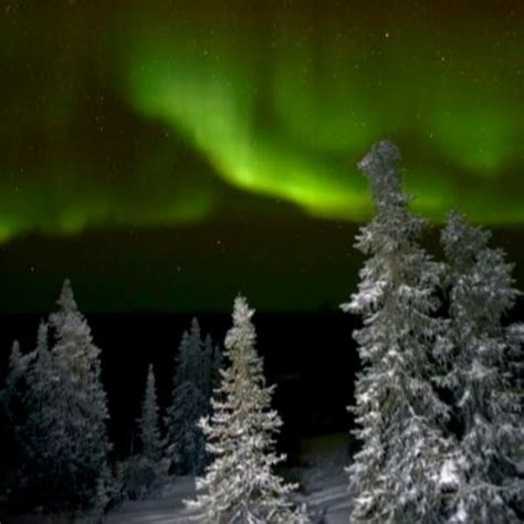 best place to view northern lights best place to view northern lights alaska zoomtravels