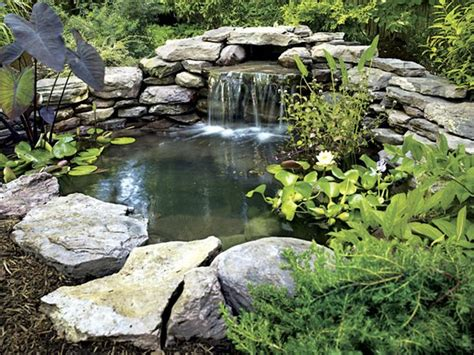 How To Build A Backyard Pond by Sprinkler Juice How To Build A Backyard Pond