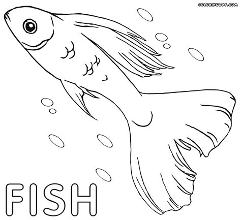 betta fish coloring page fish coloring pages coloring pages to download and print