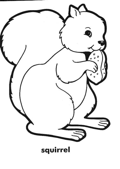 coloring world squirrel page