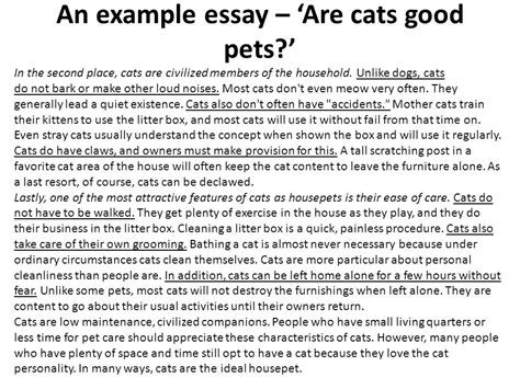 Dragonwings Essay by Essay Writing Cats And Dogs Cats