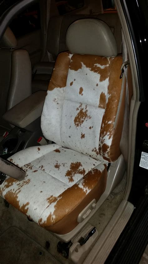 cowhide seat covers cow skin car seat covers velcromag