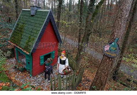 Cabin In The Woods Wolf by Big Bad Wolf Stock Photos Big Bad Wolf Stock Images Alamy