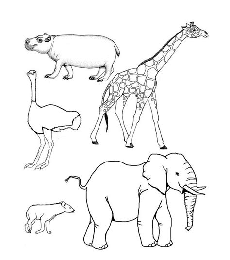 printable animal figures african animal template animal templates free