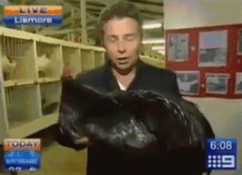 Syari Black Coksu big black gifs find on giphy