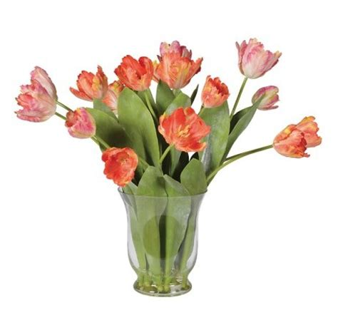 Tulips Arranged In Vase by Coral Mixed Style Tulips Arranged In Glass Vase Shivers