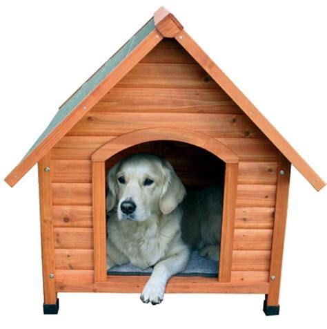 dog in new house new pitched roof dog house extra large weatherproof glazed pine doghouse ebay