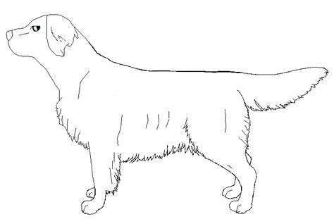 Golden Retriever Sitting Outline by Golden Retriever Outline By J Dove On Deviantart