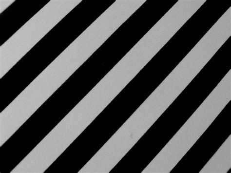 black white brokenflower org black and white stripes