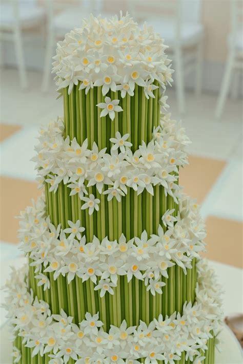 Cattleya Pinkpeach best 10 green flower photos ideas on