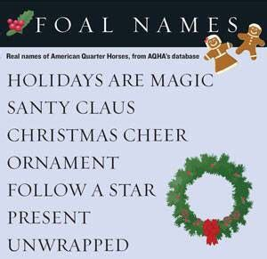 christmas themed names 17 best images about foal names on back to basics name and american
