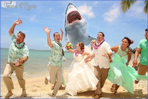 Hochzeit Hawaii weddings of hawaii toursmaps