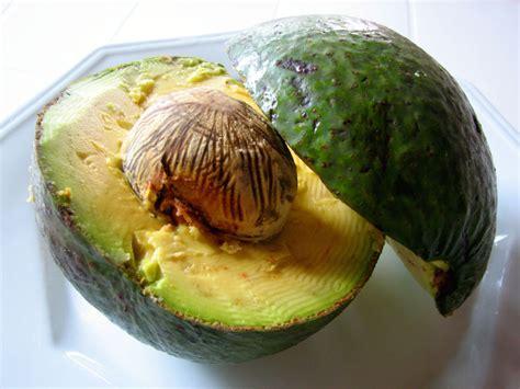 olio di avocado per cucinare avocado fantasia con gamberetti ricetta