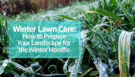 winter lawn care winter lawn care how to prepare your landscape for the