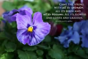 spring quotes free wallpaper dekstop spring quote spring quotes