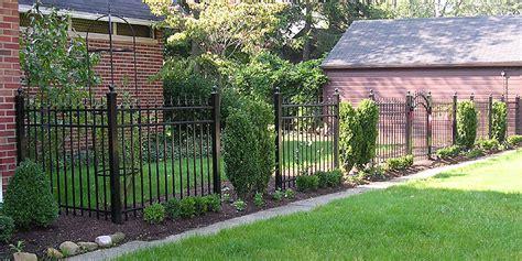 Black In Backyard by Metal Fence